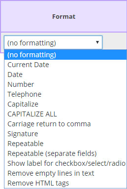 capitalize each word format option