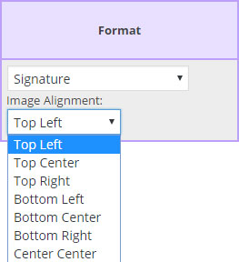 Format Dropdown List from the Field Map Designer screen