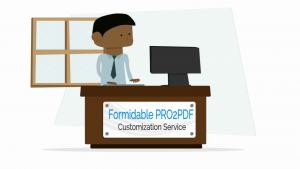 PRO2PDF_CustomizationService